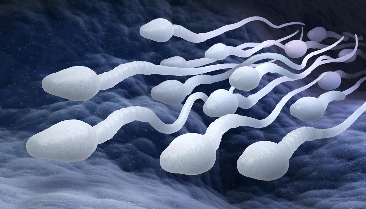 Пиоспермия у мужчин: симптомы и лечение